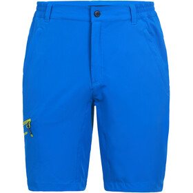 Icepeak Berwyn Stretch Shorts Heren, royal blue